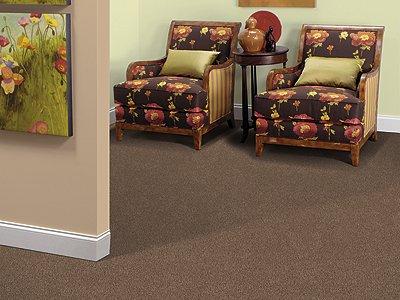 Room Scene of Scenic Shoreline III - Carpet by Mohawk Flooring