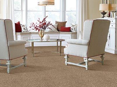 Room Scene of Striking Option - Carpet by Mohawk Flooring