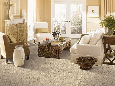 Room Scene of Oakland Acres - Carpet by Mohawk Flooring