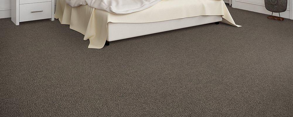 Room Scene of Memorable View - Carpet by Mohawk Flooring