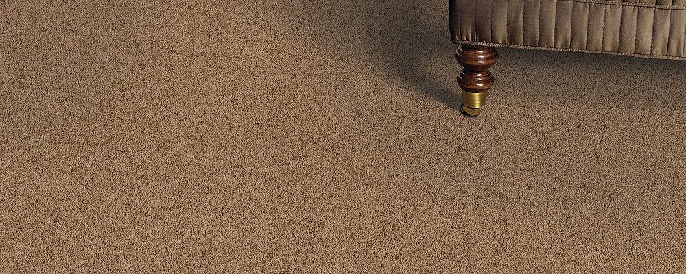 Room Scene of Witty Charm - Carpet by Mohawk Flooring