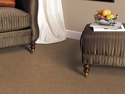 Room Scene of Playful Nature - Carpet by Mohawk Flooring