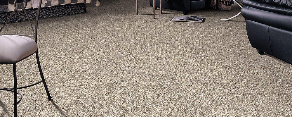 Room Scene of Mandolin Bay - Carpet by Mohawk Flooring
