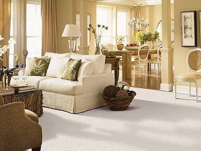 Room Scene of Awaited Bliss - Carpet by Mohawk Flooring