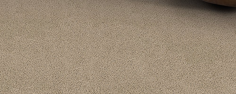 Room Scene of Perfect Combo - Carpet by Mohawk Flooring