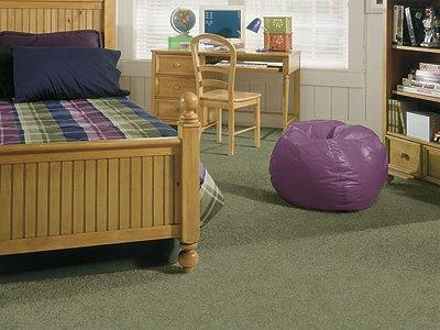 Room Scene of Power Play - Carpet by Mohawk Flooring