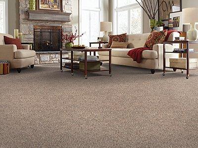 Room Scene of Pleasing View - Carpet by Mohawk Flooring