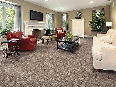 Room Scene of Gentle Breeze - Carpet by Mohawk Flooring
