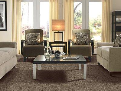 Room Scene of Seeker - Carpet by Mohawk Flooring