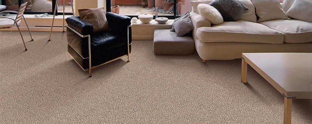 Room Scene of Clear Image II - Carpet by Mohawk Flooring