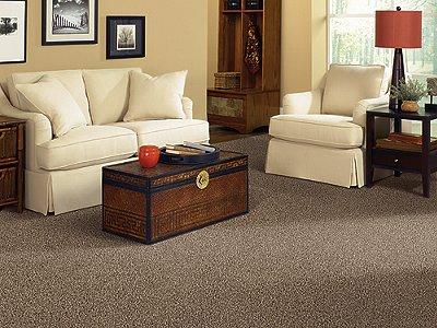 Room Scene of Thriller - Carpet by Mohawk Flooring