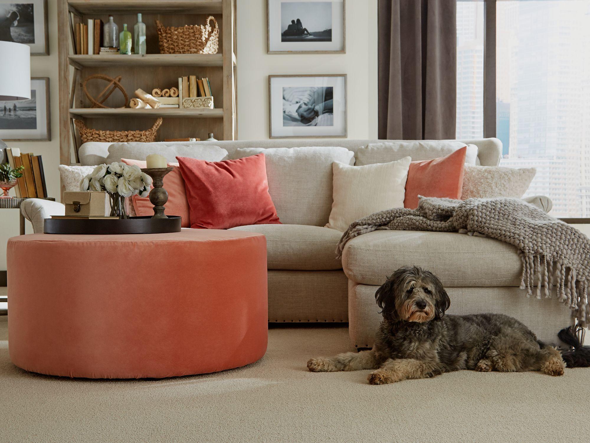 SmartStrand Forever Clean. Superior stain resistant carpet from Mohawk Flooring.