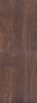 Treyburne Brown Magnolia