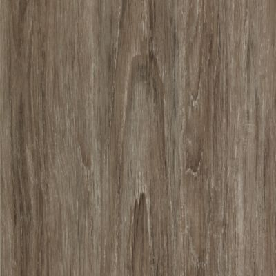 ProductVariant swatch large for Coastal Gray flooring product