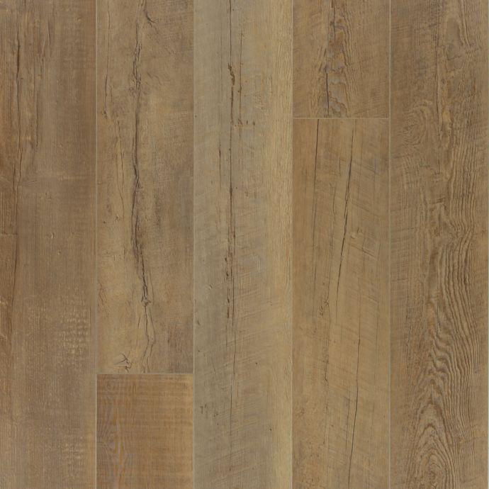 True Vision Caramel Oak 350