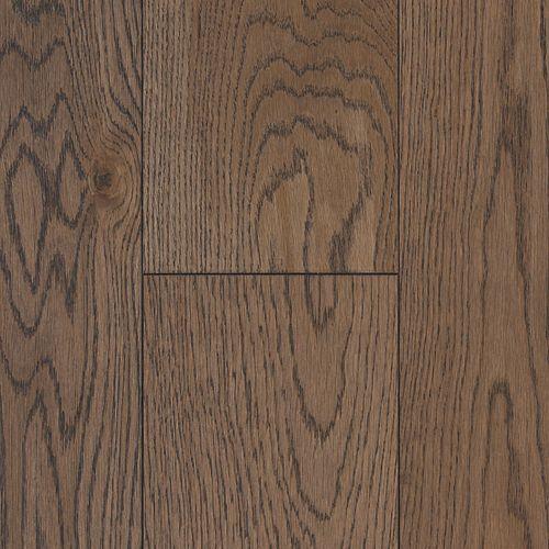 Tree Bark Oak