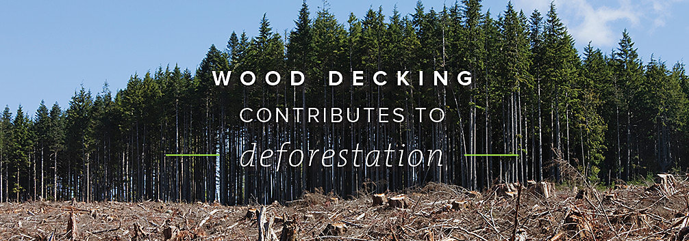 Trex composite decks are eco-friendly and don't contribute to deforestation like their wooden counterparts.