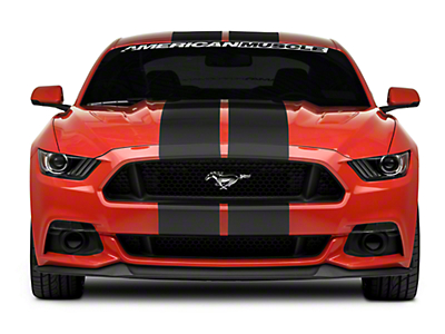 Matte Black GT500 Style Stripes - 10 in. (15-17 All)