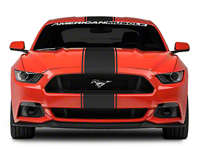 Matte Black Super Snake Style Stripe Kit (15-17 All)