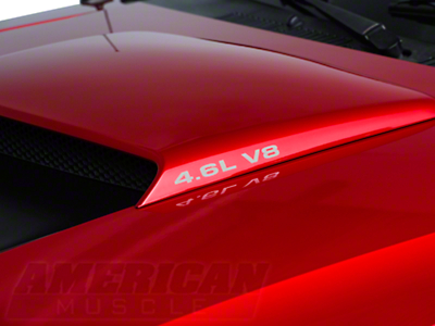 4.6L V8 Hood Scoop Decals - Silver (96-04 GT)
