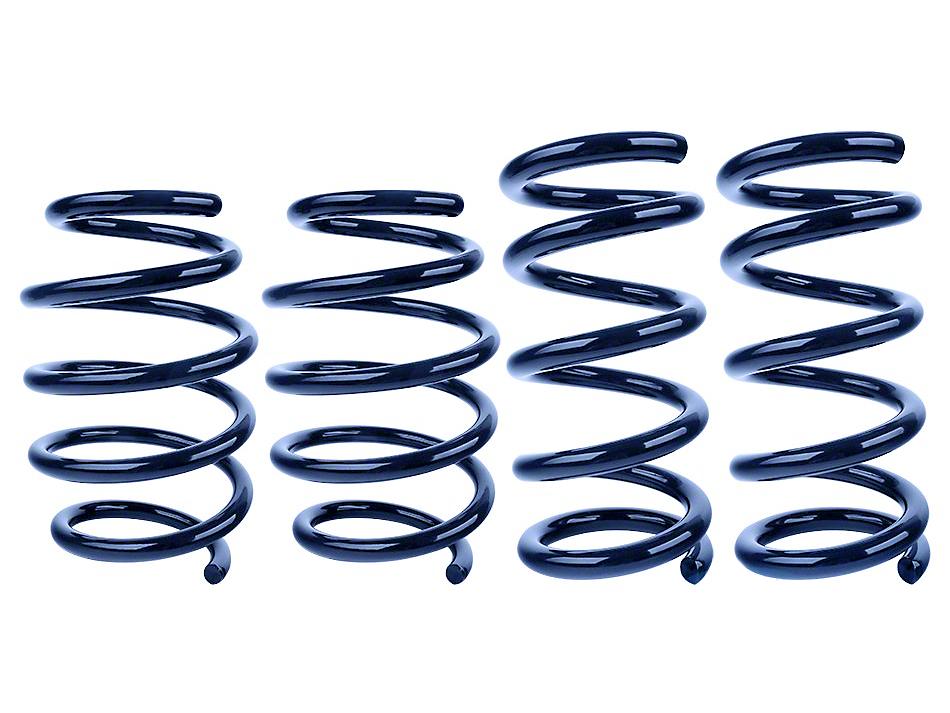 Steeda Ultralite Springs - Linear (15-17 GT, V6)