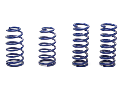 SR Performance Progressive Lowering Springs - Coupe (79-04 GT, Mach 1, 93-98 Cobra)