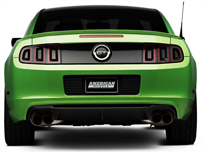 Ford Shelby GT500 Rear Valance (13-14 All)