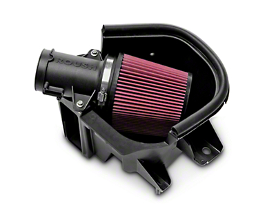 Roush Cold Air Intake (10-14 GT; 12-13 BOSS)