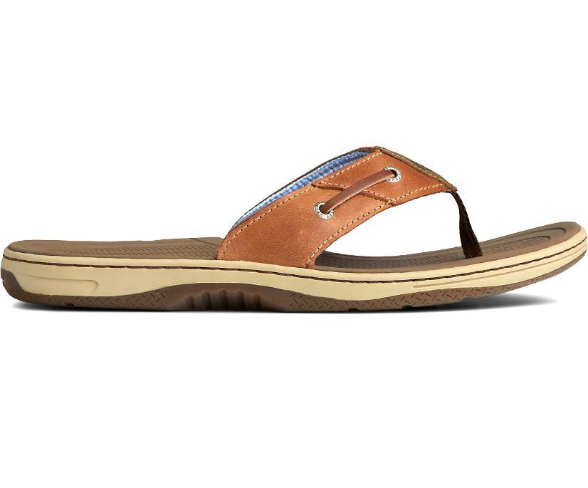 Baitfish Flip-Flops, Tan Leather, dynamic