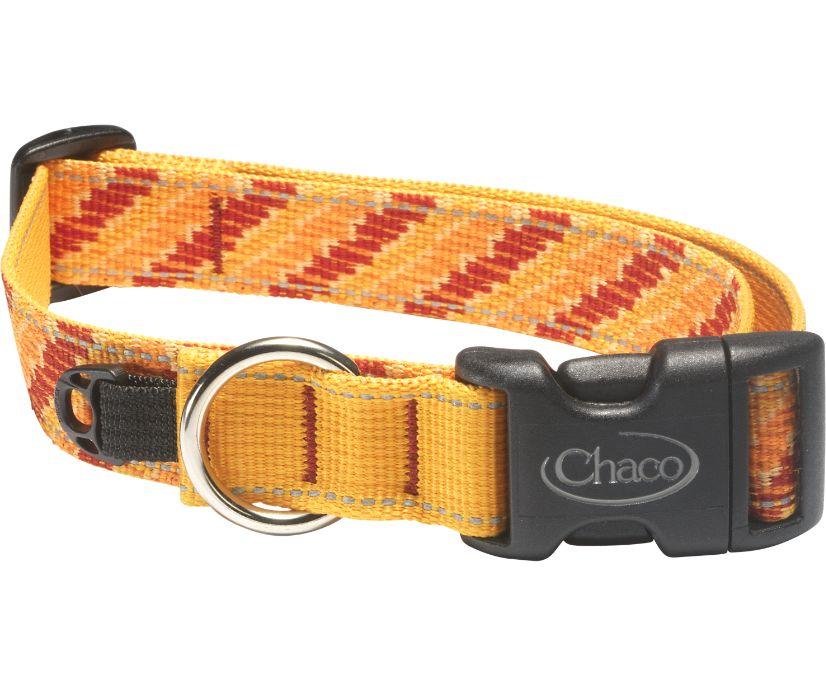 Dog Collars, Tangerine Steps, dynamic
