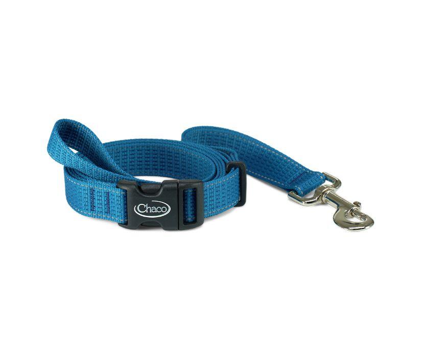 Chromatic Dog Leashes, Cerulean, dynamic