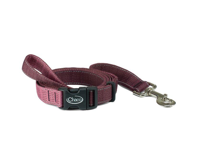 Dog Leashes, Fig, dynamic