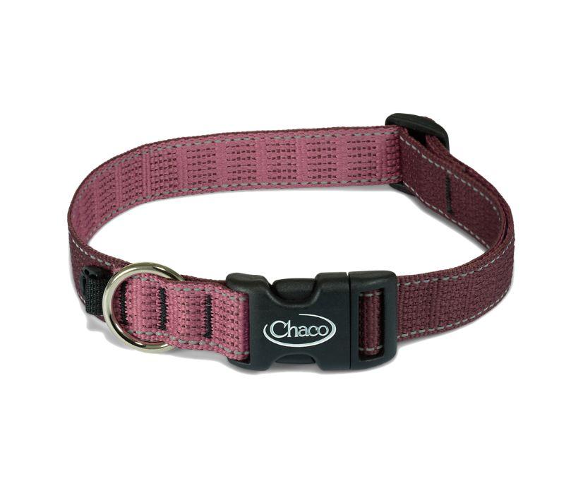 Dog Collars, Fig, dynamic
