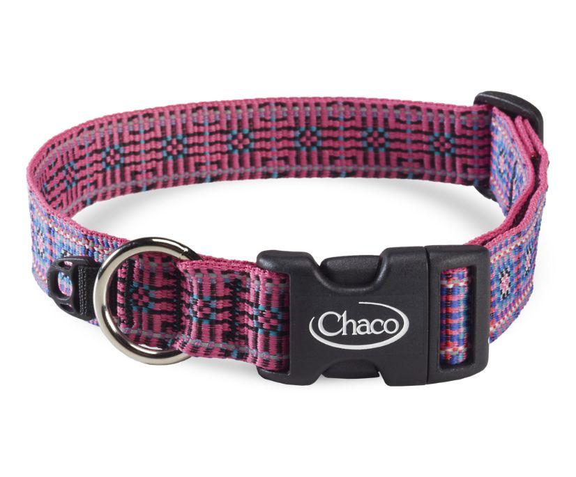 Dog Collars, Squared Magenta, dynamic