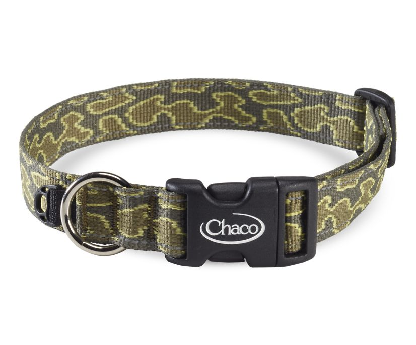 Dog Collars, Mosey Hunter, dynamic