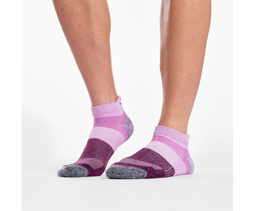 Inferno No Show Tab 3-Pack Socks, Pink Assorted, dynamic