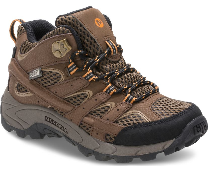 Moab 2 Mid Waterproof Boot, Earth, dynamic