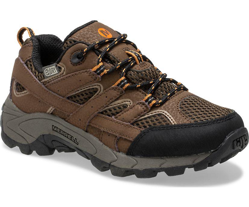 Moab 2 Low Lace Waterproof Sneaker, Earth, dynamic