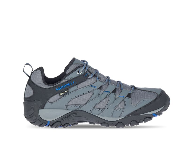 Claypool Sport GORE-TEX®, Rock/Cobalt, dynamic
