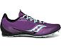 Purple | Aqua