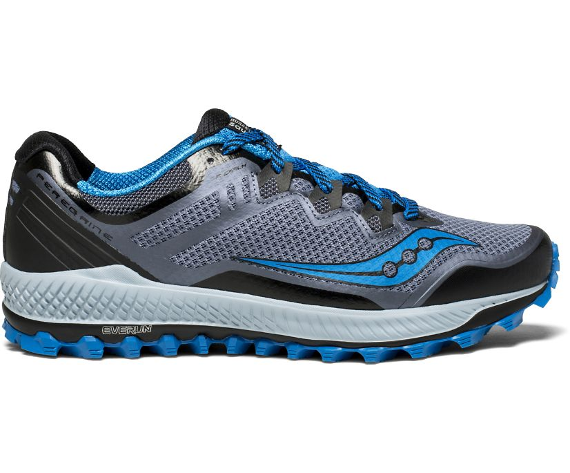 Peregrine 8, Black | Grey | Blue, dynamic