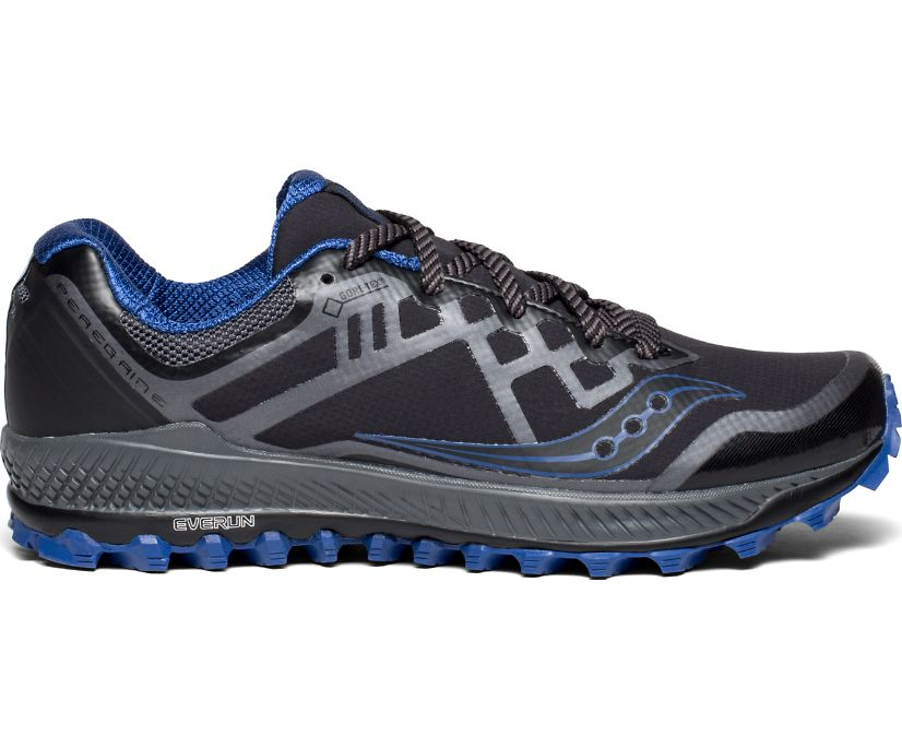 Peregrine 8 GTX, Black | Blue, dynamic