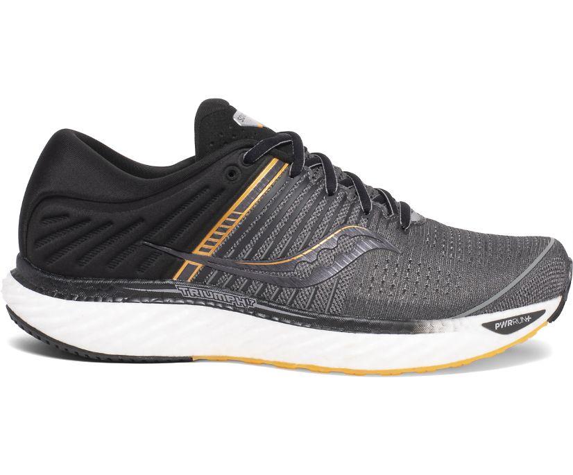 Triumph 17, Grey | Black, dynamic