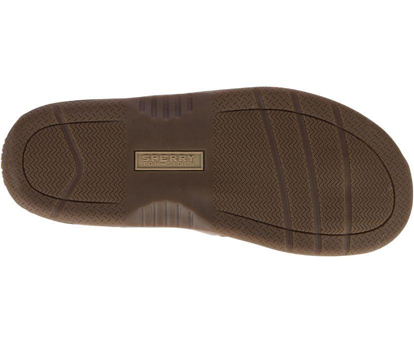 Baitfish Flip-Flops, Brown, dynamic