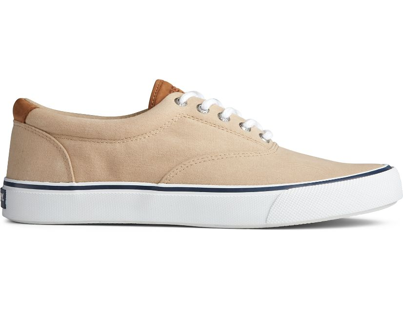 Striper II CVO Sneaker, Salt Washed Chino, dynamic