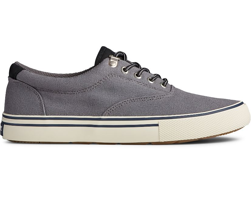 Striper Storm CVO Sneaker, Grey, dynamic