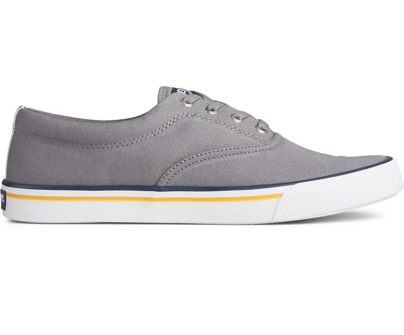 Striper II CVO Collegiate Sneaker, Grey, dynamic