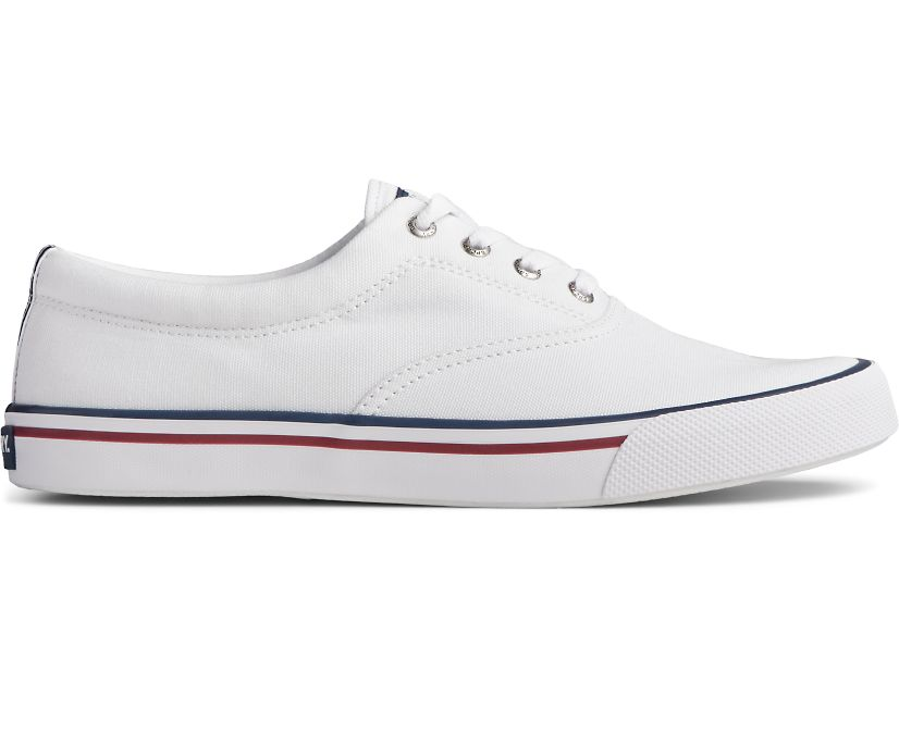 Striper II CVO Collegiate Sneaker, White, dynamic