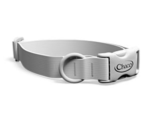 Customizable Dog Collar, Custom, dynamic