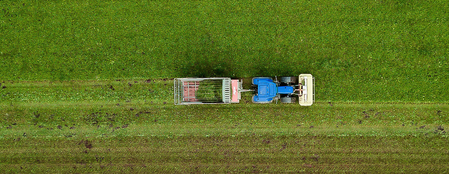 Crop field with machine